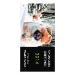 A SNOW DAY Chow holiday card CUSTOMIZE Photo Cards