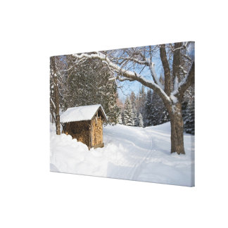 A snowy scene at the AMC s Little Lyford Pond Stretched Canvas Print