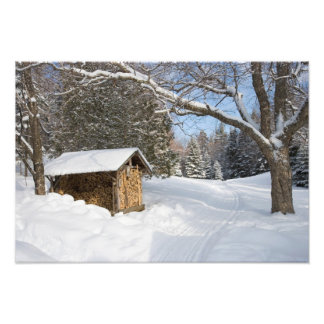 A snowy scene at the AMC's Little Lyford Pond Art Photo