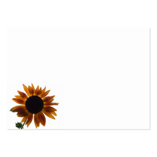 A Solitary Sunflower Business Card Templates