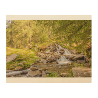 a sparkling jump of a waterfall   wood  wall art