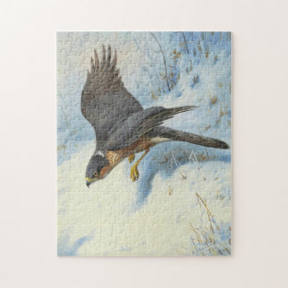 A Sparrow-hawk in Flight Jigsaw Puzzle