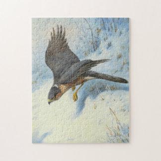 A Sparrow-hawk in Flight Puzzle