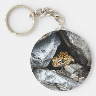 A spotted Frog hides among the rocks in a yard Basic Round Button Key Ring