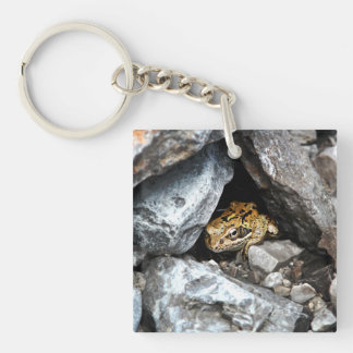 A spotted Frog hides among the rocks in a yard Double-Sided Square Acrylic Key Ring