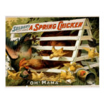 A Spring Chicken, 'Oh! Mama' Vintage Theatre