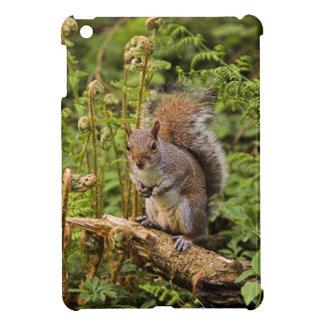 A Squirrel on a Log  iPad Mini Case