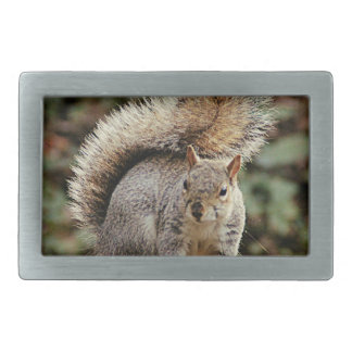 A Squirrels Tail Belt Buckle