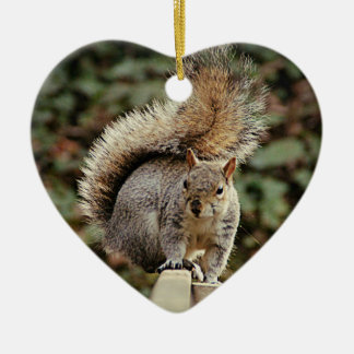 A Squirrels Tail Christmas Ornament