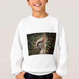 A Squirrels Tail Sweatshirt