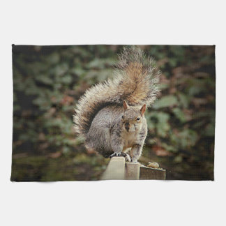 A Squirrels Tail Tea Towel