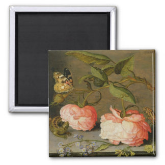 A Still Life with Roses on a Ledge Square Magnet