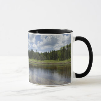 A Still Pond Reflecting The Clouds Mug