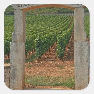 A stone portico to the vineyard square sticker