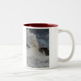 A Storm on a Teacup mug