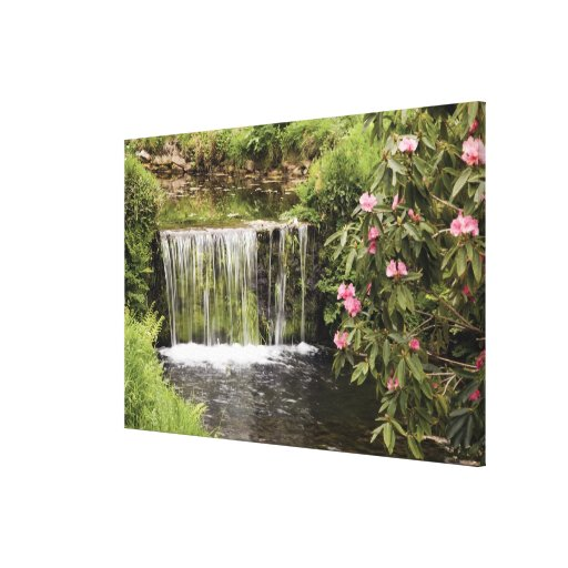 A Stream And Waterfall In Dartmoor National Park Stretched Canvas Prints
