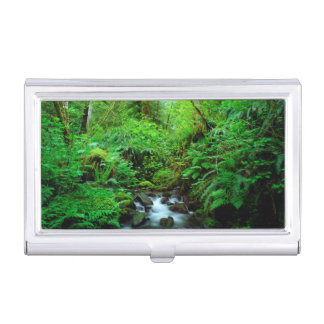 A stream in an old-growth forest business card holder