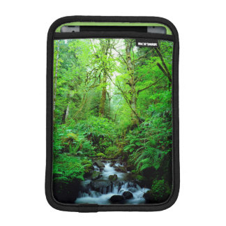 A stream in an old-growth forest iPad mini sleeve