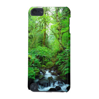 A stream in an old-growth forest iPod touch (5th generation) cases