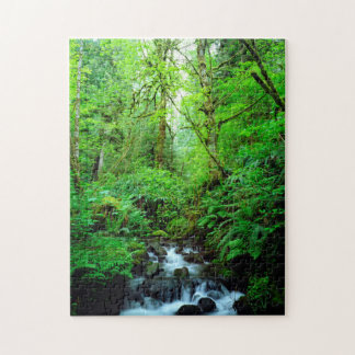 A stream in an old-growth forest jigsaw puzzle