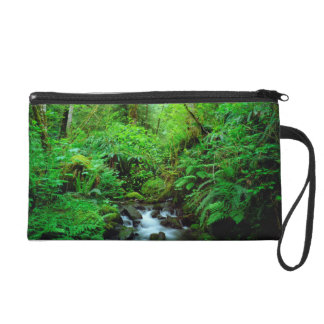 A stream in an old-growth forest wristlet
