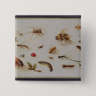 A Study of Insects 15 Cm Square Badge