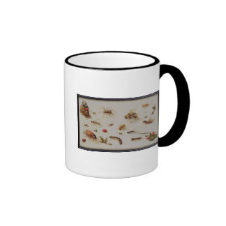 A Study of Insects Coffee Mugs