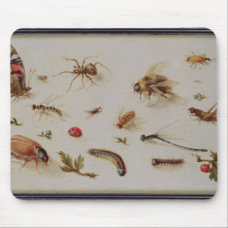 A Study of Insects Mouse Mat
