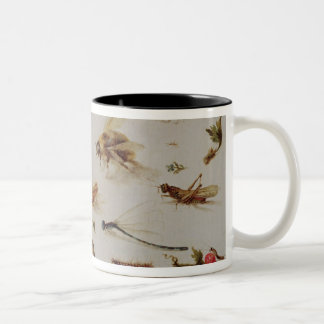 A Study of Insects Two-Tone Coffee Mug