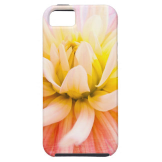 A summer Dahlia flower on wood texture iPhone 5 Cover