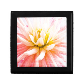 A summer Dahlia flower on wood texture Small Square Gift Box