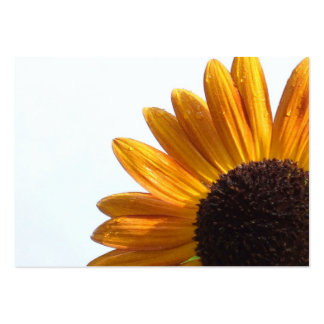 A Sunny Sunflower Pack Of Chubby Business Cards