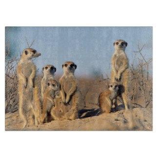 A Suricate family sunning themselves at their den Cutting Board