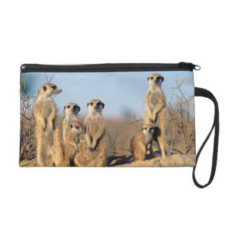 A Suricate family sunning themselves at their den Wristlet Purses