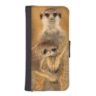 A Suricate mother and young interacting iPhone SE/5/5s Wallet Case