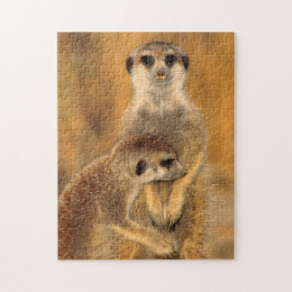 A Suricate mother and young interacting Jigsaw Puzzle