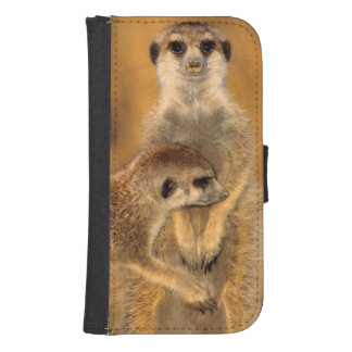 A Suricate mother and young interacting Samsung S4 Wallet Case