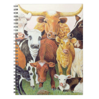 A Surprising Stranger Notebook