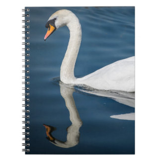 A swan and its reflection notebook