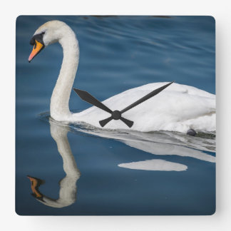 A swan and its reflection square wall clock