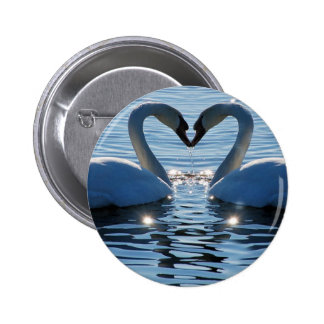 A Swan Heart Kiss Reflections of Love Pinback Buttons