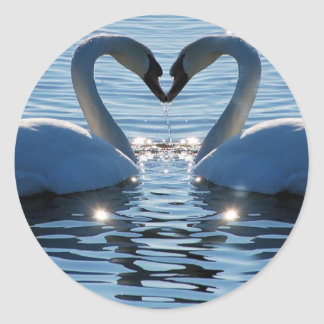 A Swan Heart Kiss, Reflections of Love Round Sticker
