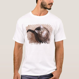 A tabby cat looking up T-Shirt