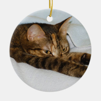 A Tabby Cat Stretching Felis Silvestris Catus Round Ceramic Decoration