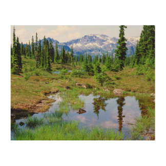 A tarn in the backcountry of Vancouver Island Wood Print