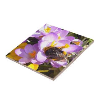 A Taste of Spring ~ Ceramic Tile