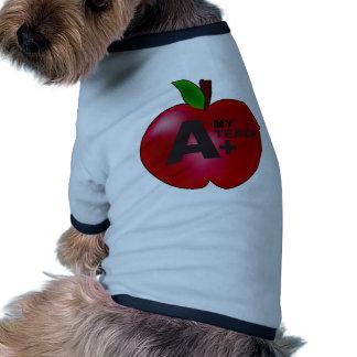 A+ Teacher Pet T Shirt