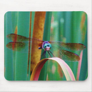 A teal Eyed Dragonfly with cattails Mousepads