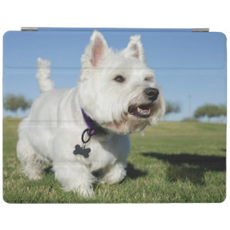 A Terrier playing out in the field iPad Cover