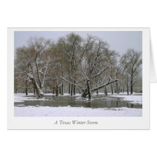 A Texas Winter Storm Greeting Card